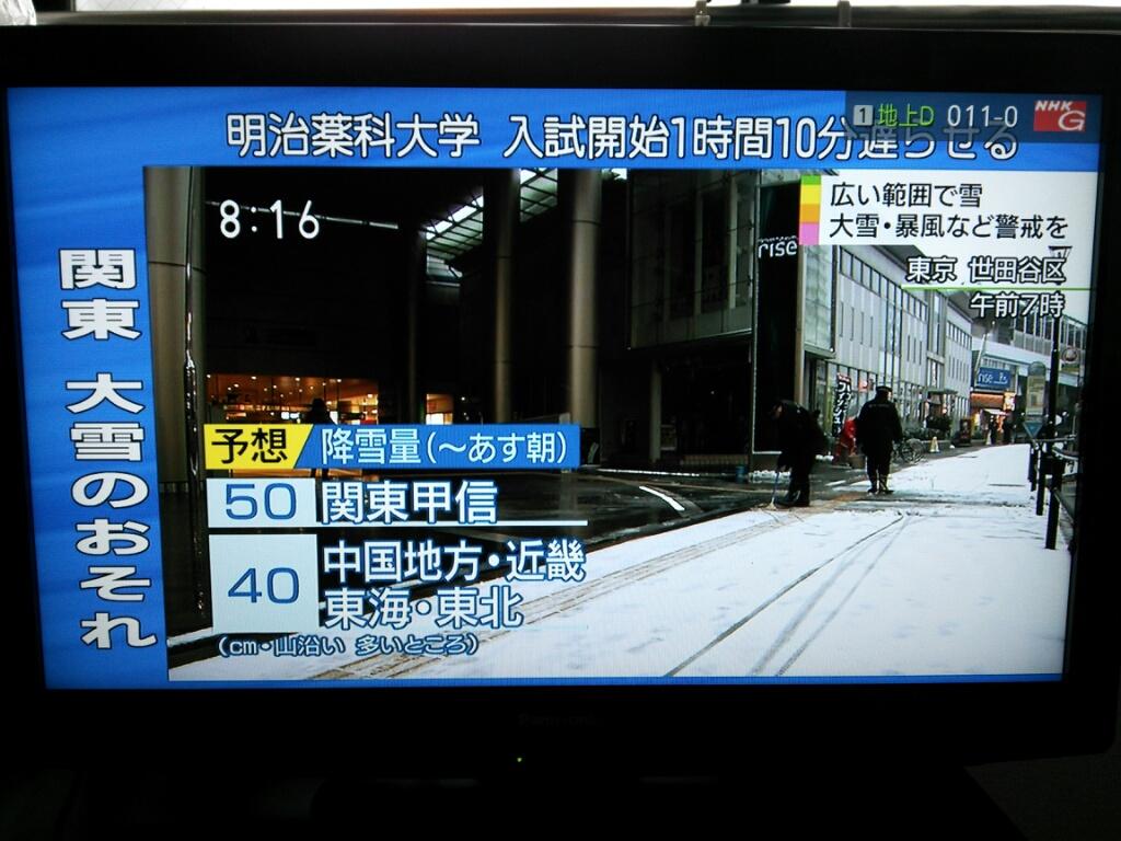 東京に雪が…