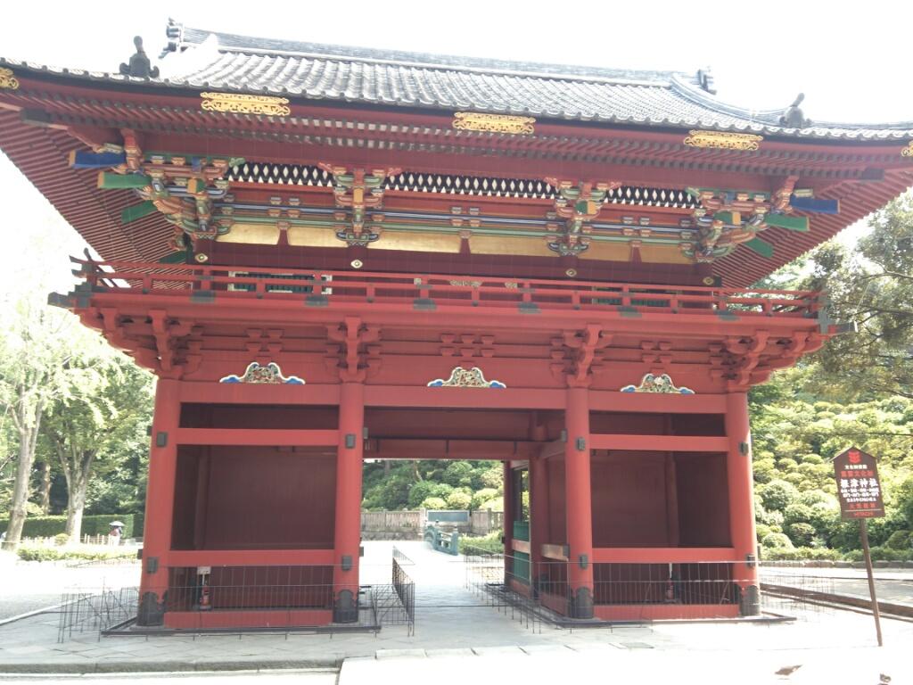 根津神社のセミの声